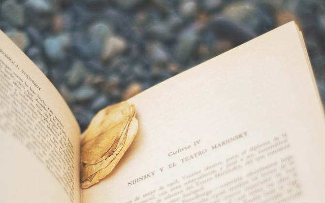 小说修辞学——西方现代小说理论的经典之作