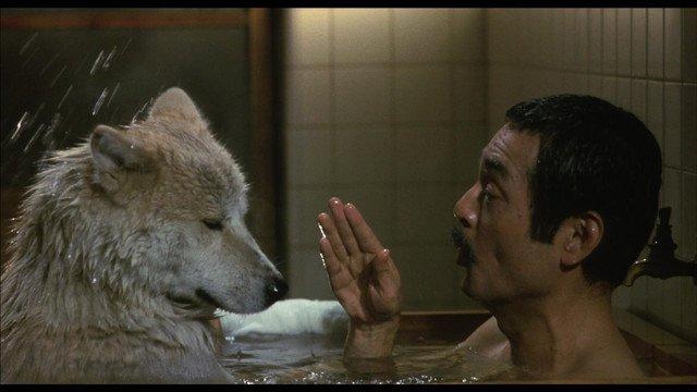 《忠犬八公物语》剧照