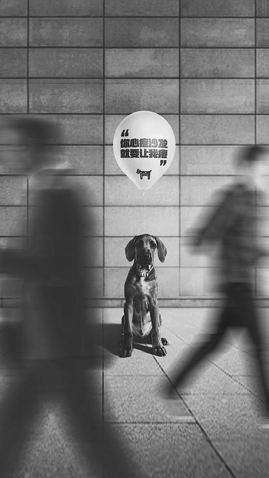 《狗态度》行为艺术——如果狗狗能说话 它会告诉你这些