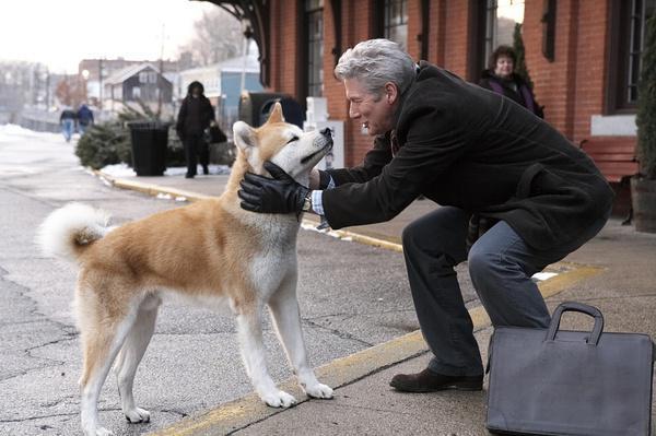 zooskool八狗一女-而萌文化的流行,又为狗的形象转变再添一把火.   在现代社会,狗的