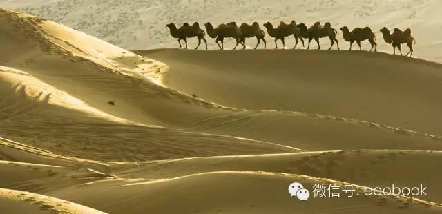 丝绸之路:商路背后鲜为人知的政治