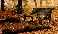 罗兰《写给秋天》
