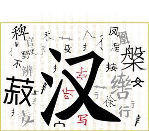 没有4万生僻字 我们还能正确使用汉字吗
