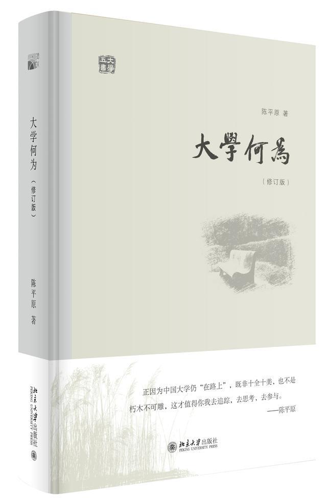 中国大学为何总成为社会热点?