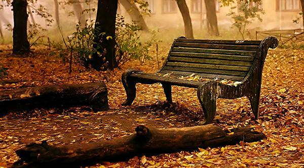 【阅独】罗兰《写给秋天》