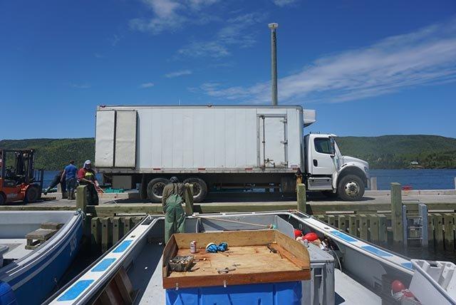 货柜车在码头等着这一天的渔获