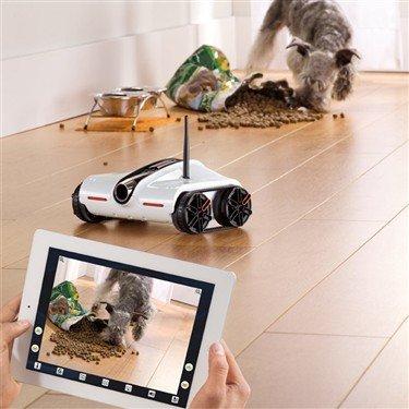 玩具车中的路虎 超酷iOS遥控摄像车