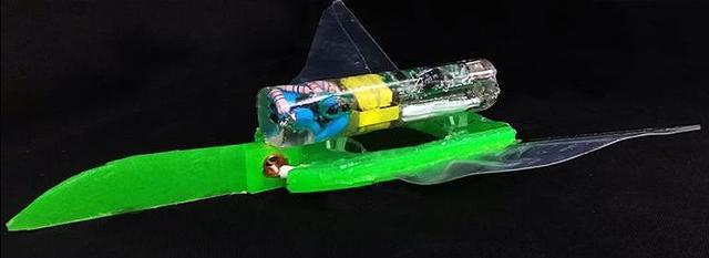 一个可以在你游泳时候监视你的小型光线机器人
