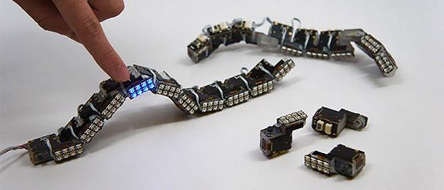 模块机器人如何让自己更聪明?你绝对猜不到