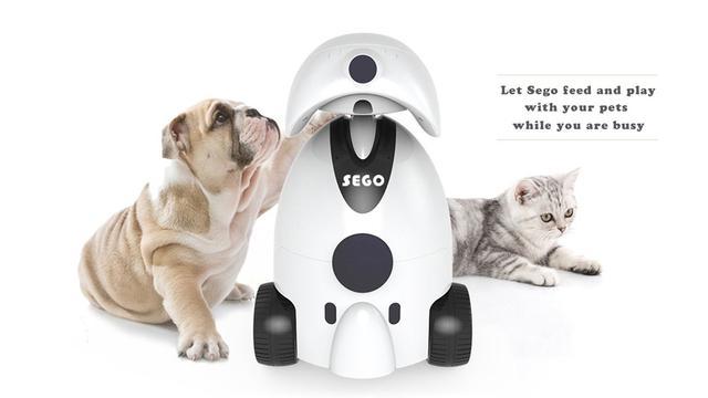 世界首款宠物保姆机器人 它能替你逗喵星人