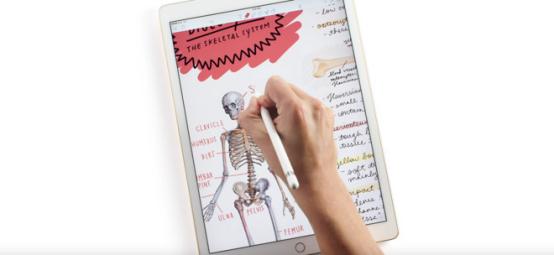 苹果总部附近出现4个新产品标识 或测试新iPad