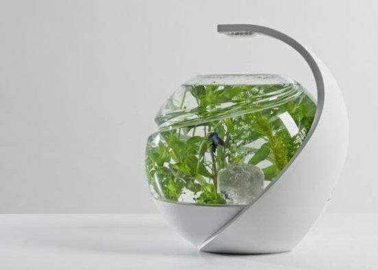 Avo自清洁环保鱼缸 内部循环无需经常换水