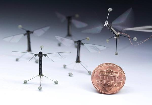 MIT猎豹领衔 这6款机器人都以动物为原型设计