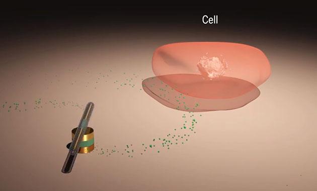 全球最小纳米电机:速度最快/续航最长