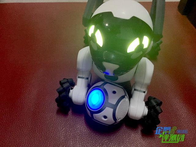 我的智能机器狗CHiP:它竟然和我家猫玩得很开心