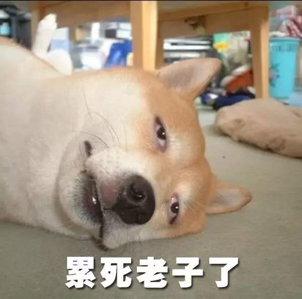 【玩儿法】靠阿猫阿狗刷微信步数?太奥特了!