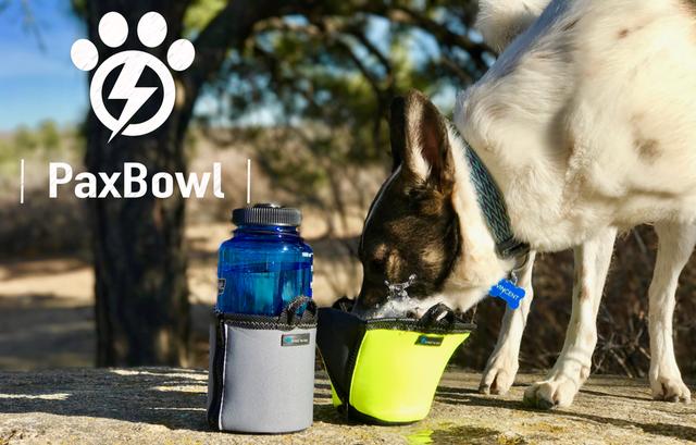 一个水杯用的套套 带狗狗外出时喂水不用愁了