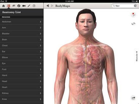 3D人体地图:人人都可以学解剖