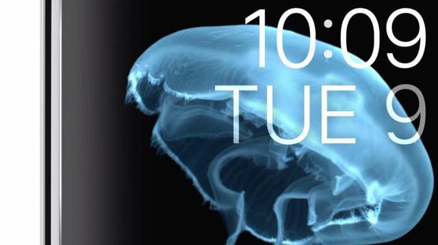 设计就是生命 凸显苹果用心的产品细节设计的照片 - 16