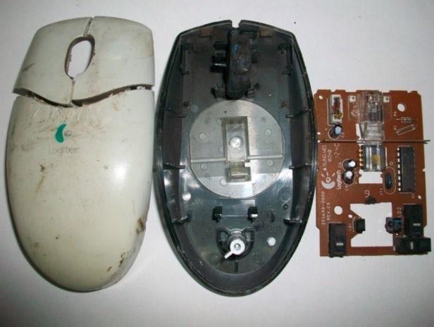 电子垃圾也能循环利用?冷冻将解决这个世界难题