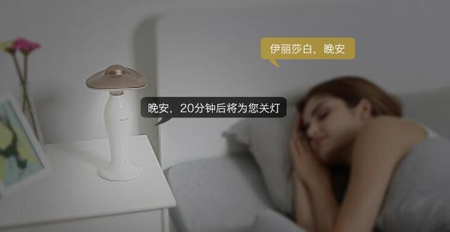【寒武计划】能听懂指令的伊丽莎白语音灯发布