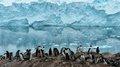 高清:叹为观止的南极