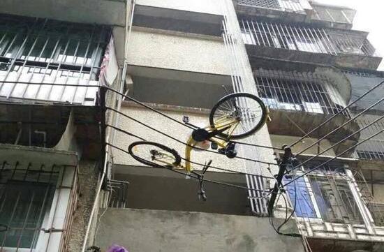 ofo快来看啊,你家单车又上电线了!