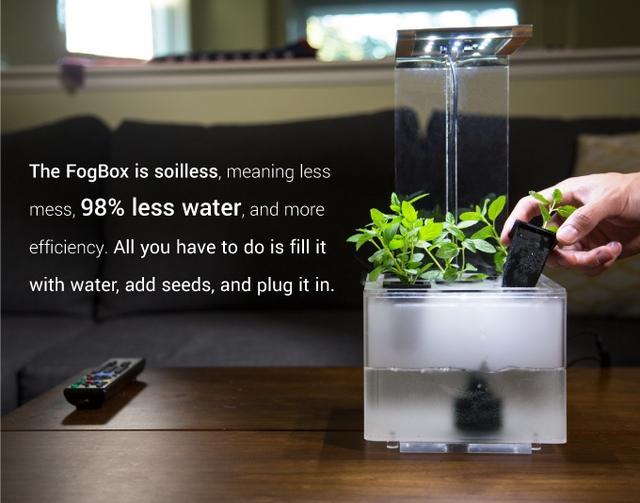 如何让家有格调?试试这个带雾化作用的营养盆栽