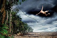 最佳环保广告摄影 跳跃的泰山