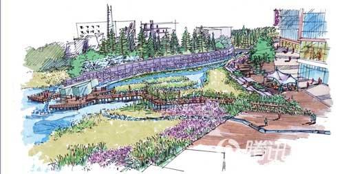 百年港湾湿地公园鸟瞰手绘图