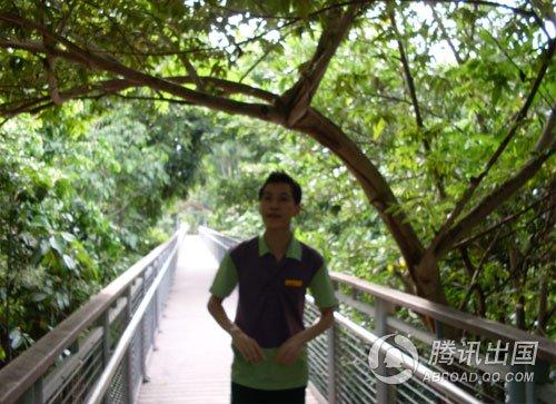 体验新加坡:圣淘沙,空中花园不是一则童话