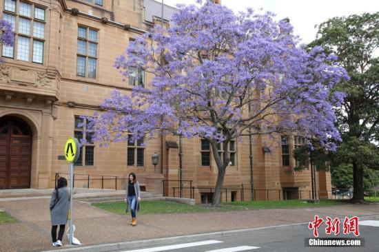 澳移民签证改革 影响海外留学生惹担忧
