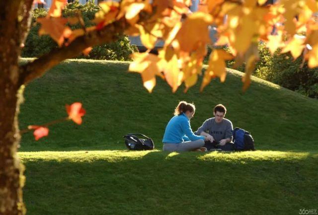 加拿大低龄留学持续升温,家长最关心的择校问题都在这儿