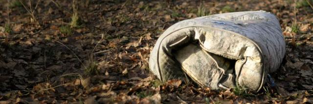 美国:商业模式在回收和复苏中找到根基
