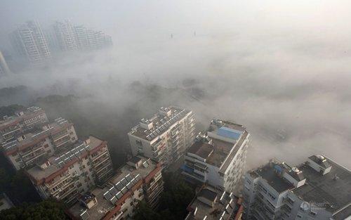 情景对话:城市空气质量太差