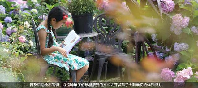 王晶:绘本阅读为儿童打开了通向世界的大门