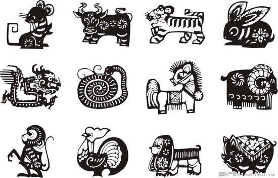 十二生肖的在英语中的比喻义|那些你不知道的事图片