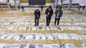 满屏全是画!中国美院阅卷 考生作品铺满体育馆