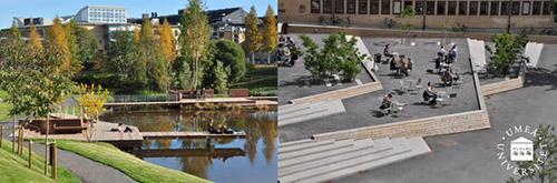 于默奥大学:留学生满意度最高的欧洲大学