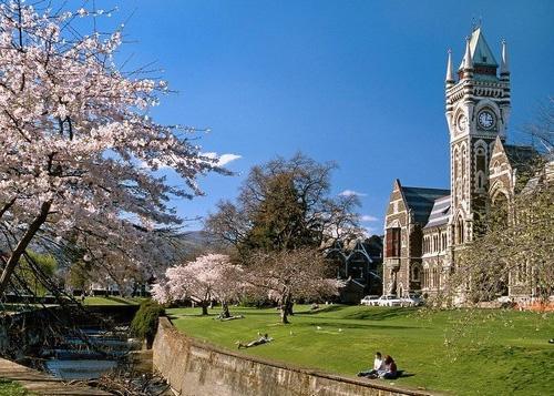 新西兰公立高中拟为留学生建宿舍吸引生源