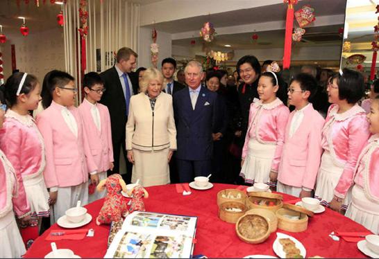 中华文化小大使评选活动