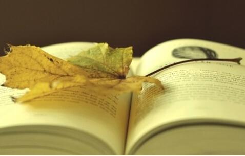 如何能够快速突破托福考试阅读题中的长难句?