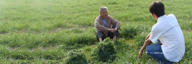 中国:经济挑战下的环境保护方式