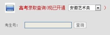 2013年湖南城市学院高考录取查询系统