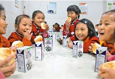 云南沧源研修牛奶营养餐:早上语文中午学生总结落实小学肉片图片