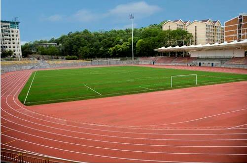 西南大学体育学院