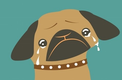 你怎么还在单身?那些虐哭单身狗的经典语句