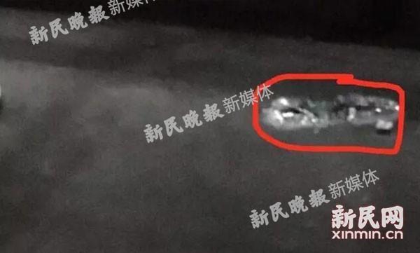 上海松江大学城一名女生坠楼 系两日内第二起