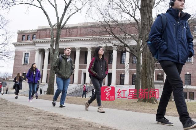 想读名校比手快?哈佛录取率创历史最低,原因是这样的
