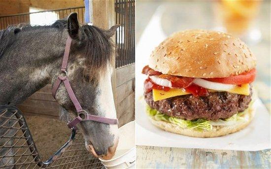双语:挂牛头卖马肉 千万牛马肉汉堡被召回